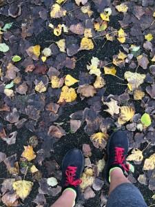 Herbstlaub und rote Schnürsenkel